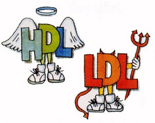 ldl-hdl